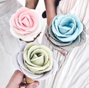 мор розы