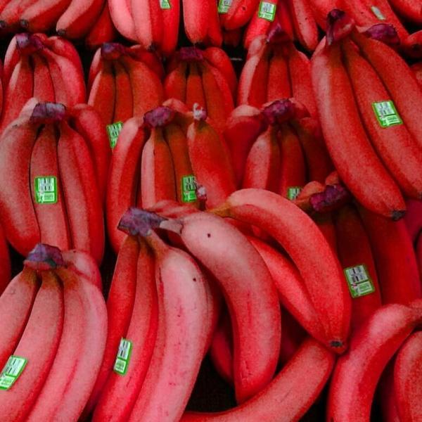 8 полезных свойств красного банана