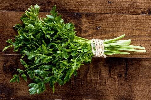 the-feast-breath-fresheners-parsley